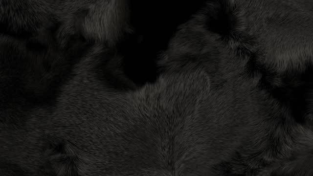 Black Fur Background Black fur animation, close up, 3D generated, slow motion black shiny soft fur texture. fur stock videos & royalty-free footage