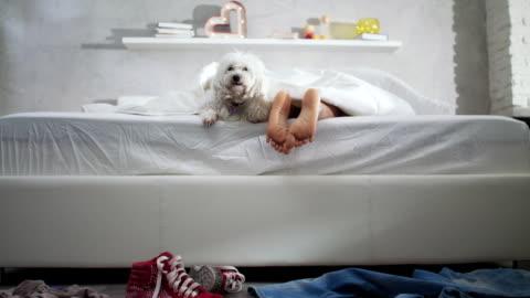 vídeos y material grabado en eventos de stock de negro chica durmiendo en la cama con perro y mostrando los pies - lento