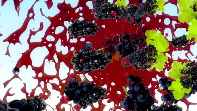 Black Grape Fresh Fruit Splash Liquid Juice Background video