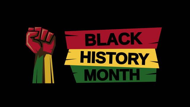 yumrukile siyah tarih ay - black history month stok videoları ve detay görüntü çekimi