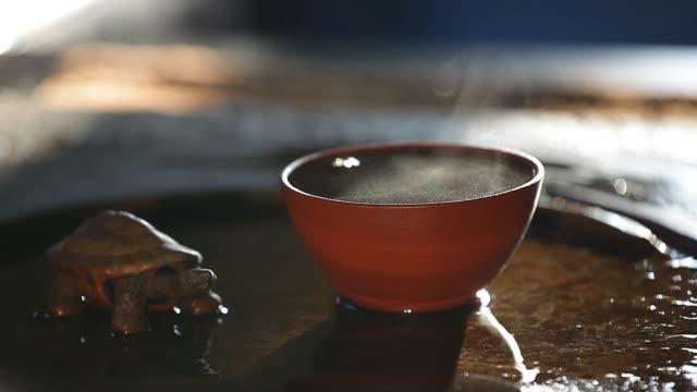 black hot tea cup turtle hd footage