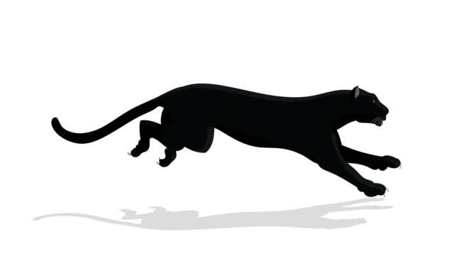 black panther animal run cykel animation - leopard bildbanksvideor och videomaterial från bakom kulisserna
