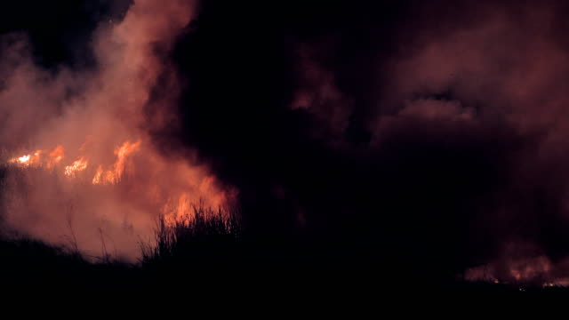 vidéos et rushes de feux de brousse noir de fumée et féroce en danger dans la nuit - desastre natural