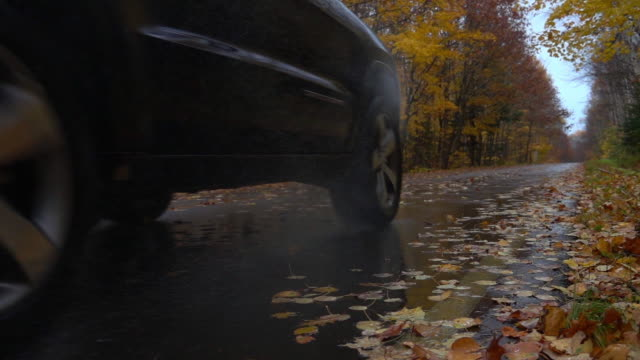 slow motion close up: black suv car drives on wet forest road over fallen leaves - mokry filmów i materiałów b-roll
