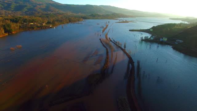 vídeos y material grabado en eventos de stock de grulla cuellinegra se reserva, nianhu lago, provincia de yunnan, china - río yangtsé