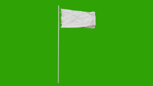 blank plain white flag waving in the wind, surrender flag 3d animation with green screen. 4k - flaga filmów i materiałów b-roll