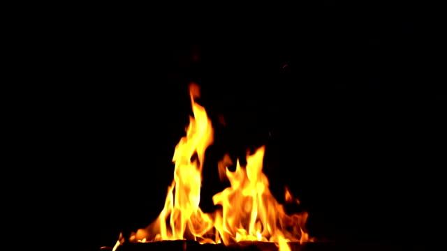 siyah üzerinde izole yanan kamp ateşi - şenlik ateşi stok videoları ve detay görüntü çekimi