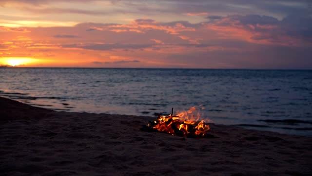 sahilde kamp ateşi yaz akşamı sırasında yanan. arka plan olarak doğada şenlik ateşi. ahşap beyaz kum kıyısında günbatımında yanan. seçici odak. deniz su kenarı yakınındaki tropikal romantik manzara. - şenlik ateşi stok videoları ve detay görüntü çekimi