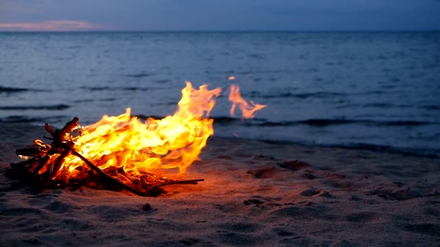 Blazing campfire on the beach during summer evening. Bonfire in nature as background. Burning wood on white sand shore at sunset. selective focus. tropical romantic landscape near sea water edge. - video