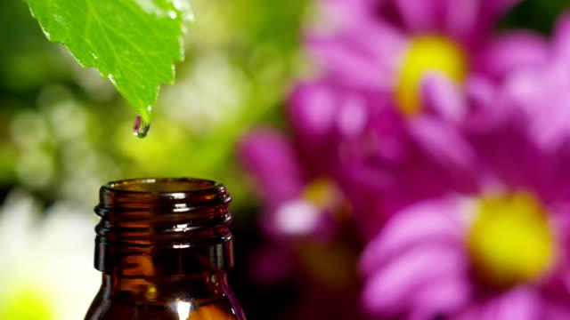 vidéos et rushes de mélange d'huiles essentielles avec des gouttes d'eau, de parfums et d'arômes en aromathérapie pour spa et de bien-être. concept de la beauté. huiles essentielles parfumées. gouttes d'essence relèvent d'une feuille de piscine dans le centre de bien-être - soin spa