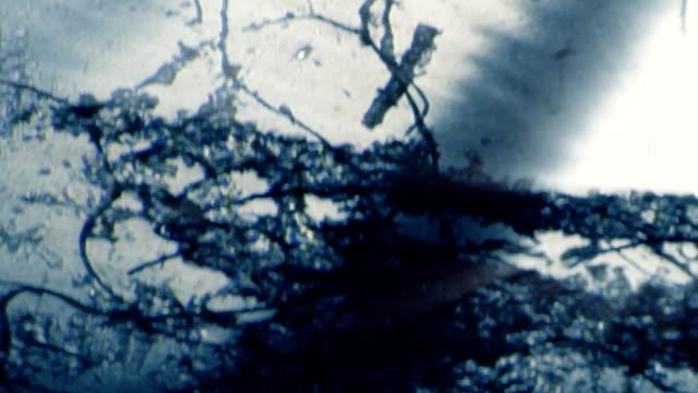 blinkande ramar i smutsiga, repor vintage retro film - diabild bildbanksvideor och videomaterial från bakom kulisserna