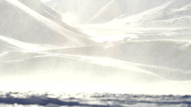 ブリザード、吹雪に強い海風をお楽しみください。周囲のロングイヤービーエン、スヴァールバルます。 - 雪が降る点の映像素材/bロール