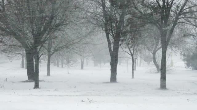 snöstorm i staden.skytte på vintern. - snöstorm bildbanksvideor och videomaterial från bakom kulisserna
