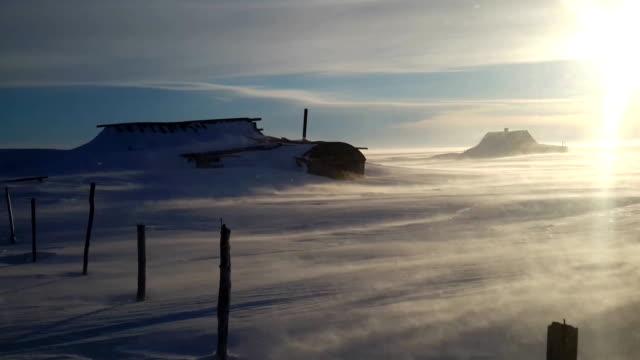 冬のツンドラのブリザード - 雪が降る点の映像素材/bロール