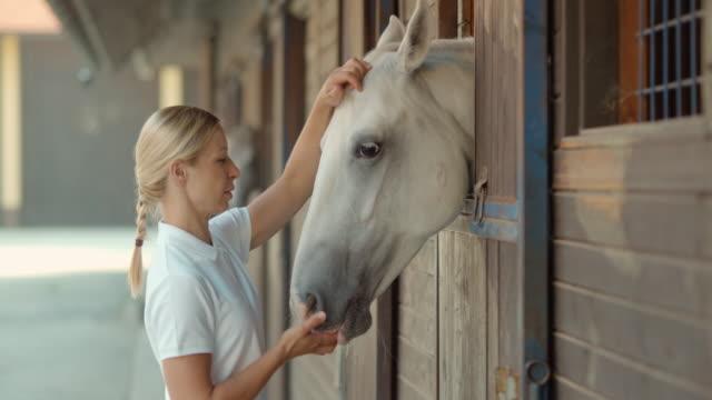 SLO Missouri DS Blonde femme nourrir white horse de stabilité - Vidéo