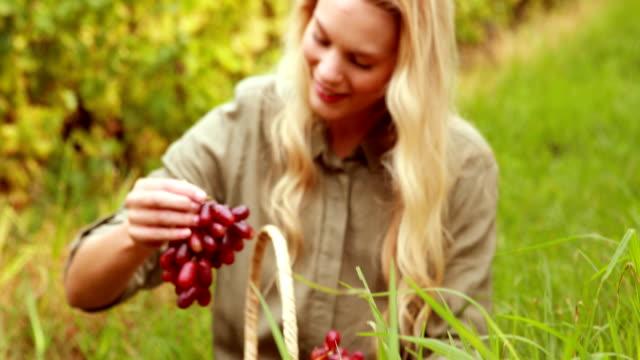 blonde winegrower ausführender eine rote traube - winzer sitzend trauben stock-videos und b-roll-filmmaterial