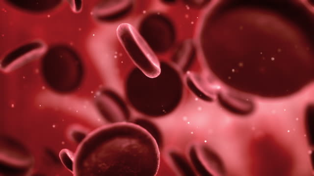 Blood Cells (Loopable)