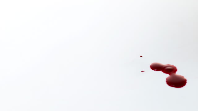 Blood Dripping against White Background, Slow Motion 4K video