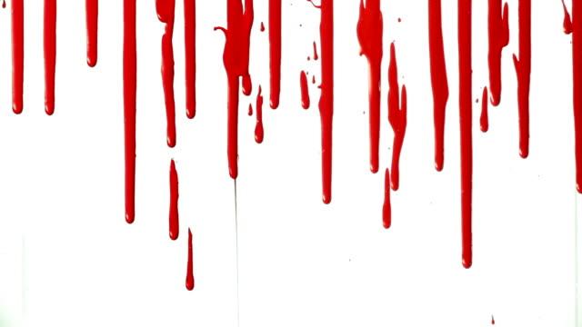 vidéos et rushes de gouttes de sang sur blanc en - sang