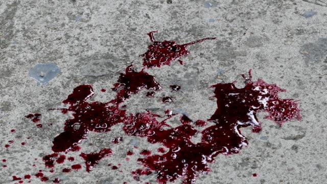 blod faller på golvet. - golv bildbanksvideor och videomaterial från bakom kulisserna