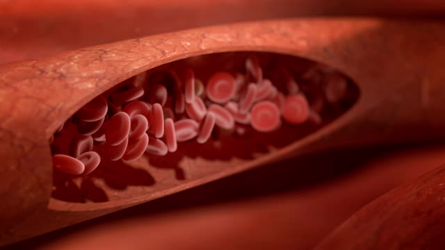 blood flow blood flow simulation; 3d render blood clot stock videos & royalty-free footage