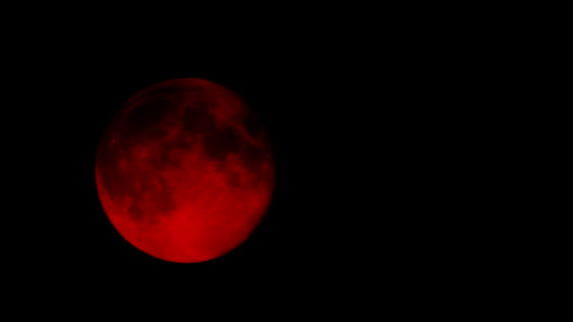 Blood Moon In The Night Sky Blood red moon rises in the night sky count dracula stock videos & royalty-free footage
