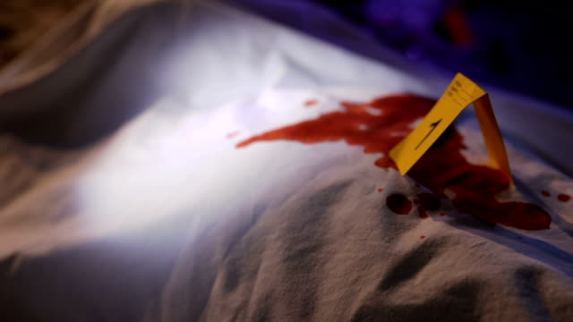 Blood on murder victim Two people at the crime scene, forensics next to a dead body, holding ultraviolet light, searching for evidence. crime scene stock videos & royalty-free footage