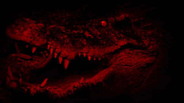 血赤ワニ口抽象が開きます - 尖っている点の映像素材/bロール