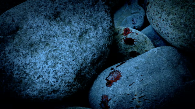 Blood Spatters On Rocks In The Evening video