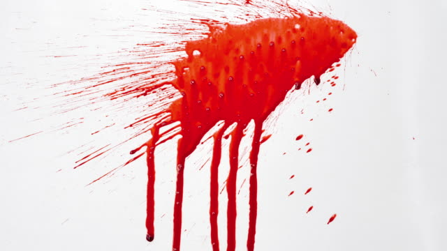blood splash on white background - spruzzo video stock e b–roll