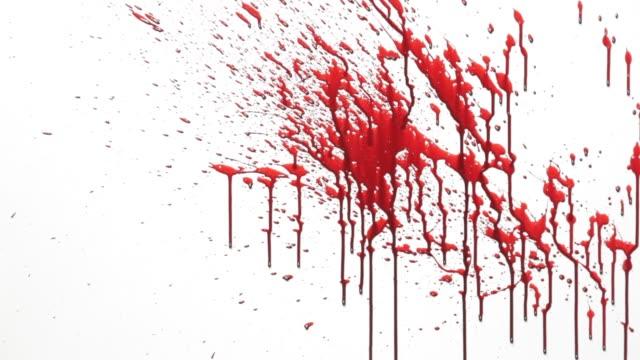 vidéos et rushes de éclaboussure de sang - sang