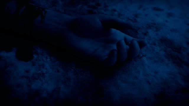 braccio insanguinato sulla neve di notte - cadavere video stock e b–roll