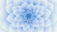 istock Blooming Blue Flower. Seamless Looped. 1215500613