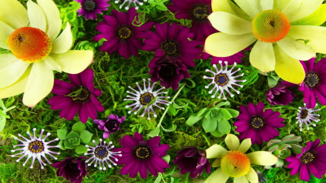Blooming flowers on green living wall