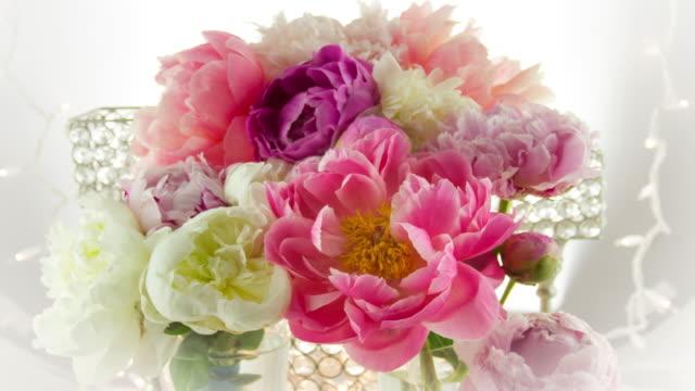 Blooming Peony Flowers. video