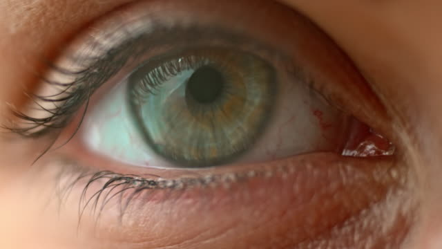 SLO MO ECU Blue and hazel eye opening and blinking Slow motion extreme close up shot of a blue and hazel eye opening and blinking. eye stock videos & royalty-free footage