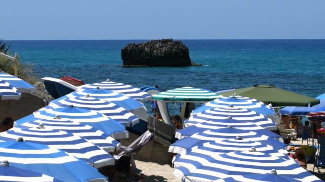 blue and white umbrellas lined up close to the sea - video di tropea video stock e b–roll