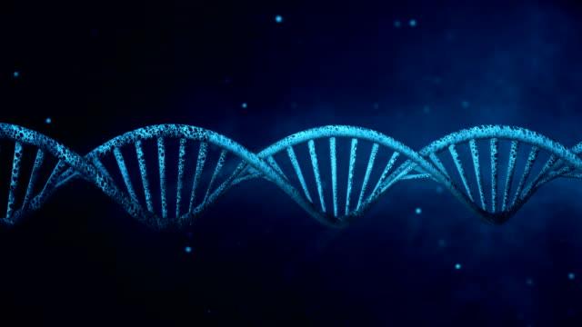 vídeos de stock, filmes e b-roll de fundo azul com dna de giro. loop - biotecnologia