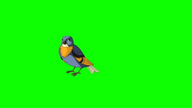 vídeos de stock, filmes e b-roll de pássaro azul saiu voando e moscas - pássaro