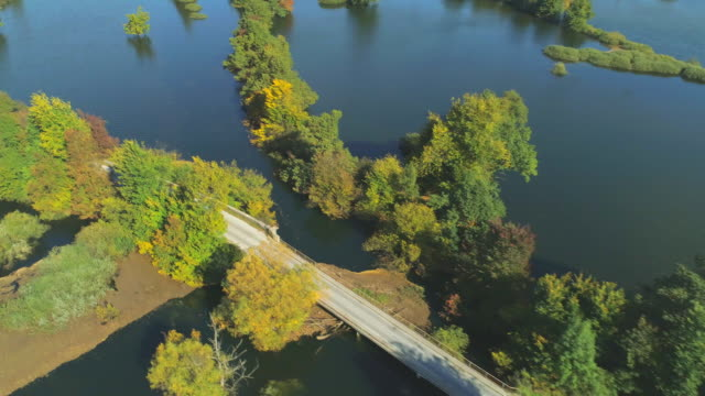 AERIAL Blue car hides and reappears in autumn colored treetops in flooded nature video