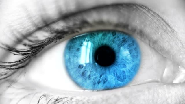 blue eye - fokus bildbanksvideor och videomaterial från bakom kulisserna