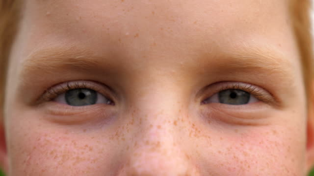 Blue eyes of small cheerful boy blinking and looking into camera with a happy sight. Portrait of cute face of young smiling child with freckles watching with positive emotion. Close up Blue eyes of small cheerful boy blinking and looking into camera with a happy sight. Portrait of cute face of young smiling child with freckles watching with positive emotion. Close up eyes closed videos stock videos & royalty-free footage