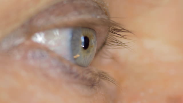 stockvideo's en b-roll-footage met blauwe vrouwelijke ogen. - ooglid