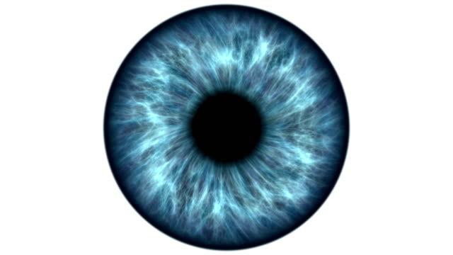 vidéos et rushes de œil bleu se dilater et de passation de marchés. très détaillé très gros plan, de l'iris et la pupille. - rétine