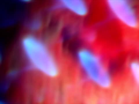 Blue Liquid Light video
