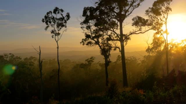 Blue mountains, NSW Australia 4K footage series australia stock videos & royalty-free footage