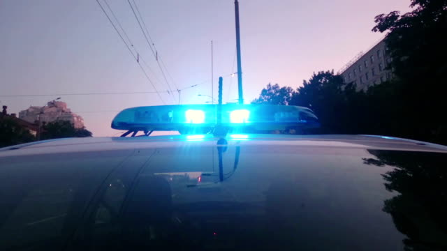 Blue police lights flashing on patrol car, emergency vehicle, law video