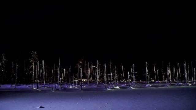 Blue pond illumination light up in winter night at Biei, Hokkaido, Japan.  During the winter when the pond is frozen, it is lighting up at night. video