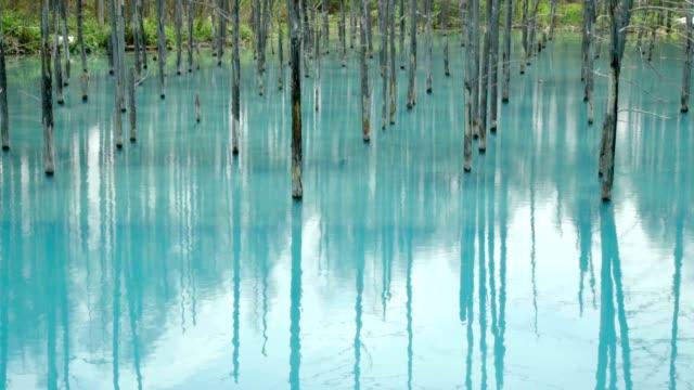 Blue pond(Aoiike) video