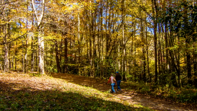 Blue Ridge Mountain Hiking Trial with People Walking in Autumn video